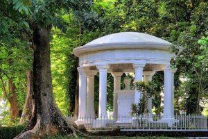 Богорский сад и его зеленые обитатели